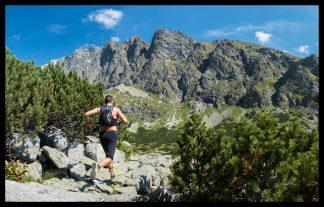 Tatranská šelma ultra ve Vysokých Tatrách. Prodej fotoobrazů Dlouhá Trať, Fotograf Lukáš Budínský, podpora Mamma HELP