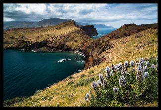 Madeira. Prodej fotoobrazů Dlouhá Trať, Fotograf Lukáš Budínský, podpora Mamma HELP
